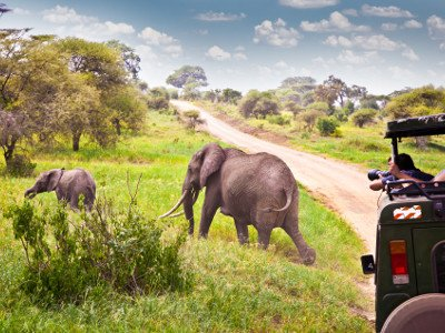 SUDAFRICA: SAFARI ACCESSIBILE IN CARROZZINA